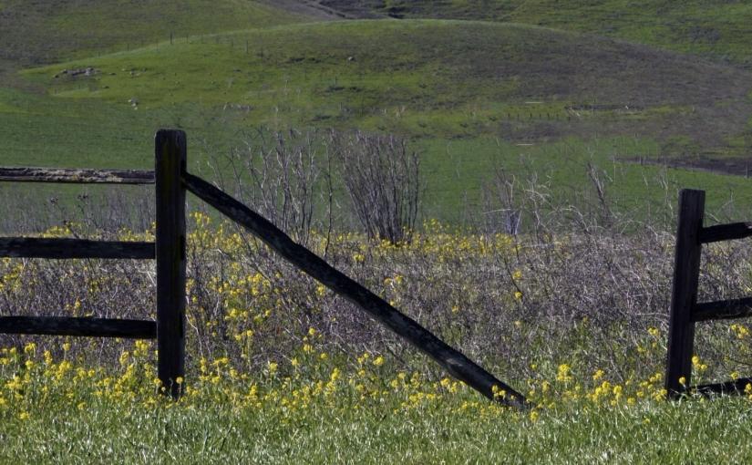 Hop Off the Fence,Agnostics!